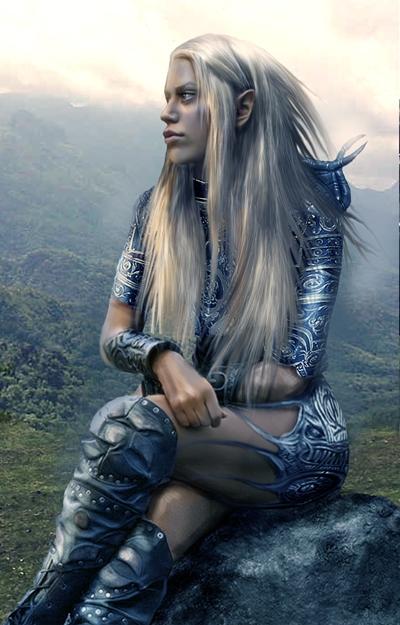 elven warrior the neverwinter vault