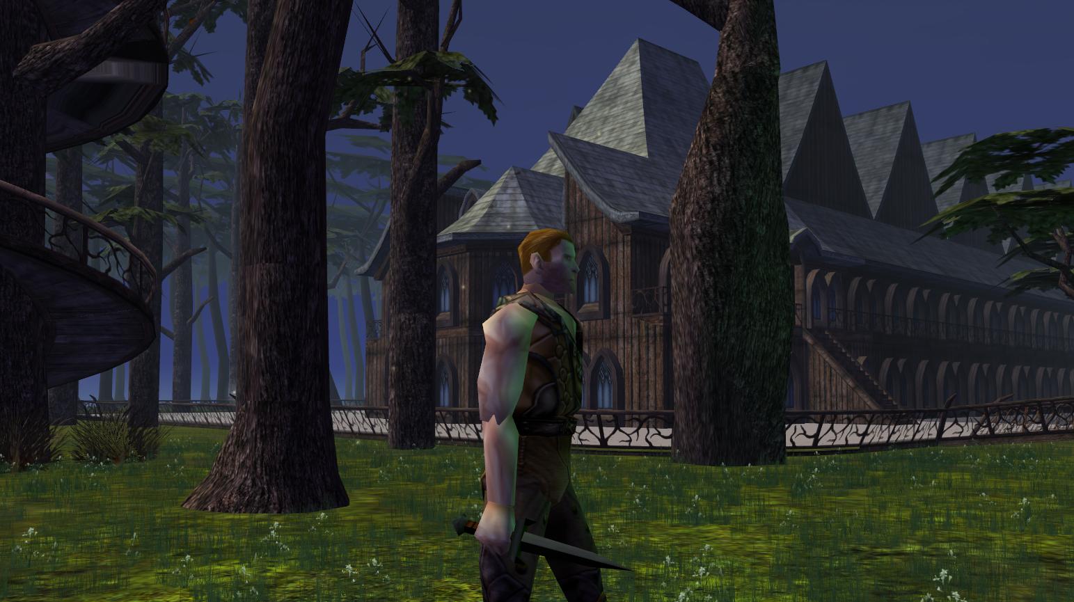 Elven City | The Neverwinter Vault