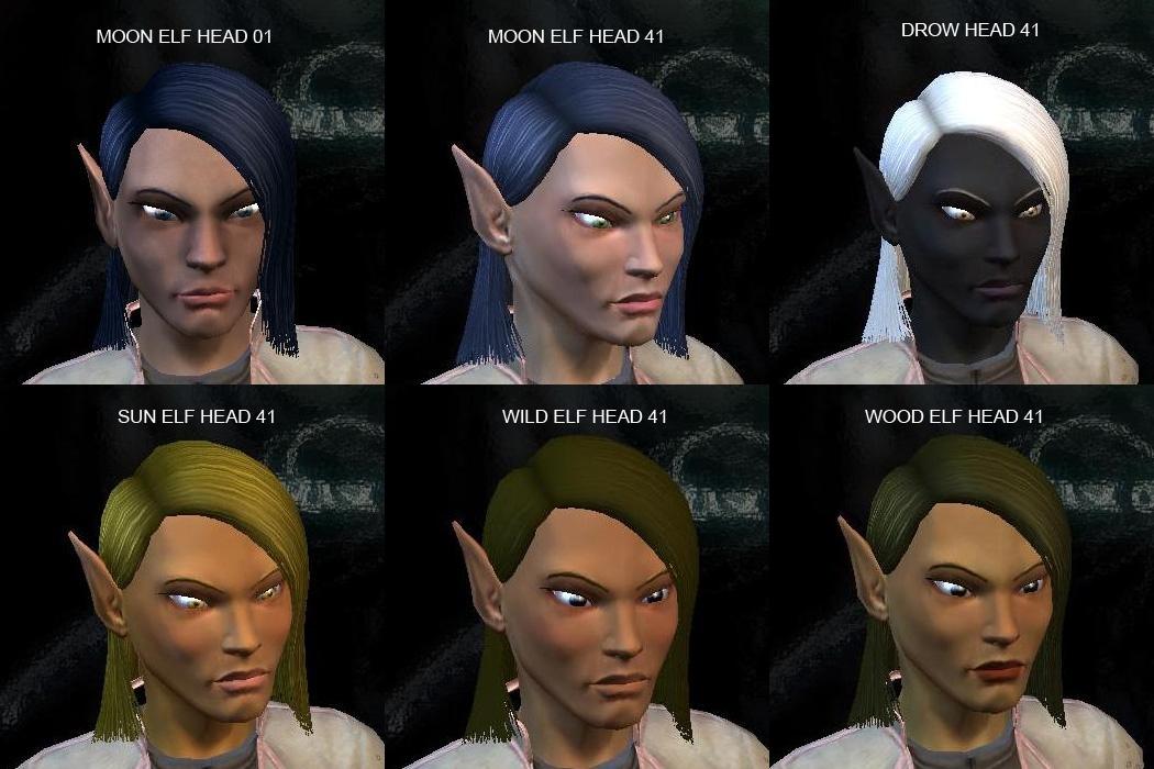 Female Elf Heads The Neverwinter Vault