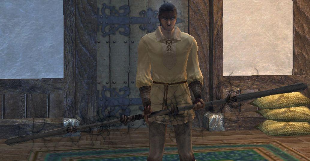 Neverwinter Nights, Team PvP Server: Alestorm LotR, Class: Monk ...