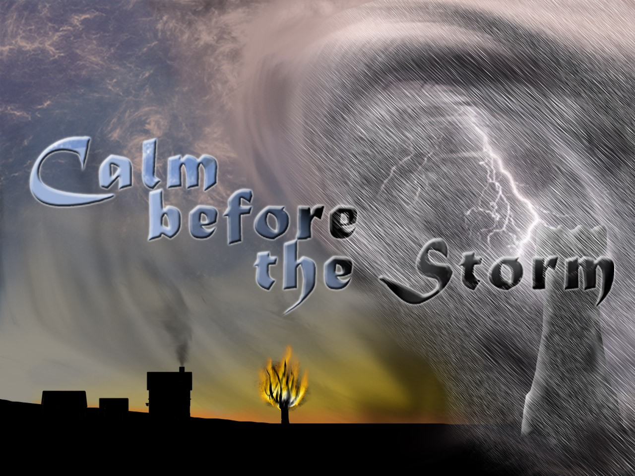 Silence Before The Storm Quotes