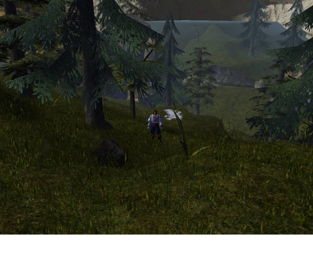 The Savage Frontier and Surrounds   The Neverwinter Vault