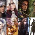 Star Elves & Wild Elves
