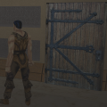 Door in Game