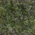Moss/Green Slime Covered Rock
