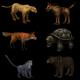 Skinmesh Animals